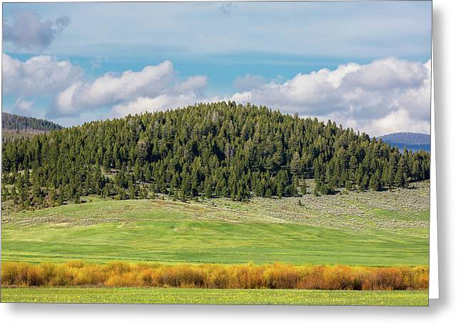 Meagher County Landscape Greeting Card by Todd Klassy
