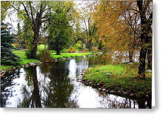 Meandering Creek In Autumn Greeting Card