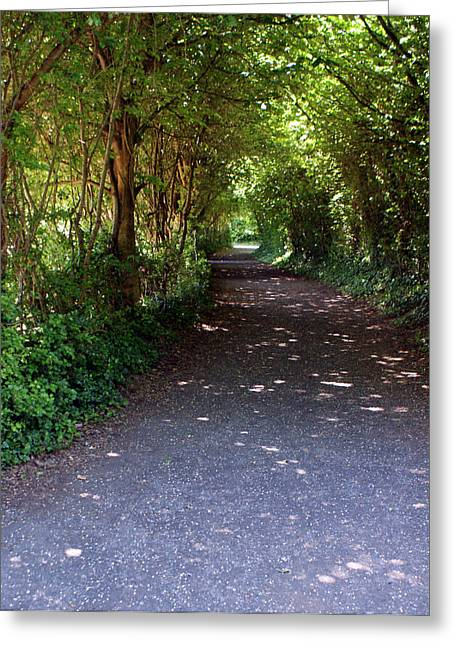 Meandering Way Greeting Card by Michael  Cryer