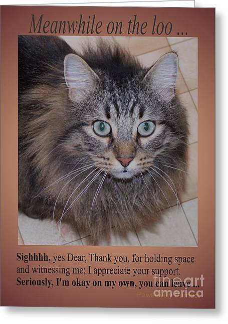 Meanwhile On The Loo Greeting Card