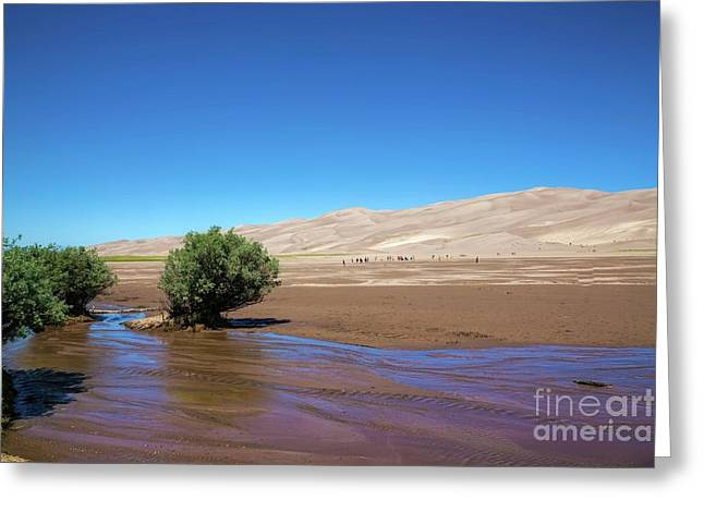 Medano Creek Greeting Card by Jon Burch Photography