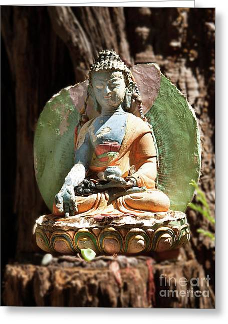 Greeting Card featuring the photograph Medicine Buddha With Offerings by Carol Lynn Coronios
