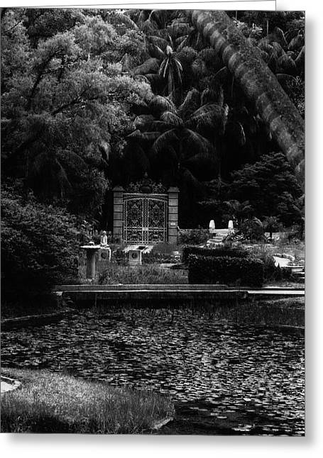 Greeting Card featuring the photograph Medidation Garden by Amarildo Correa
