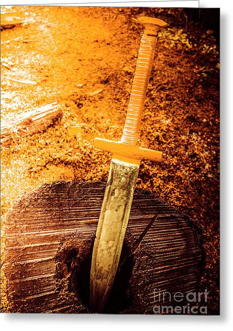 Medieval Training Sword Greeting Card by Jorgo Photography - Wall Art Gallery