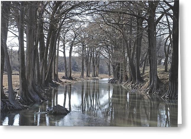 Medina River In Winter Greeting Card
