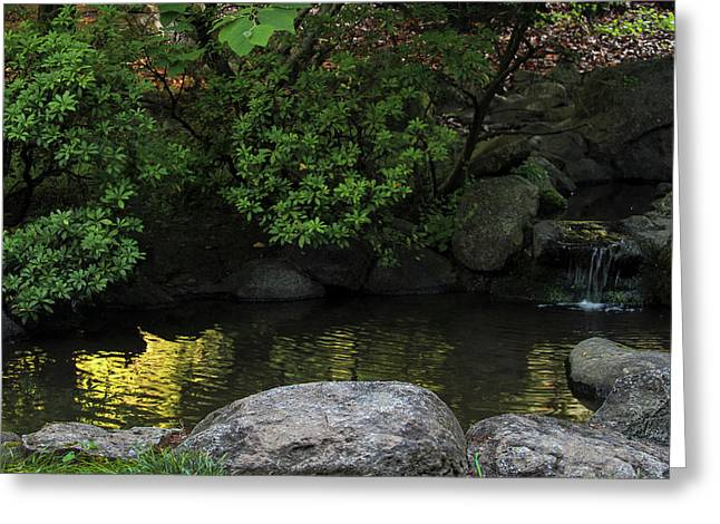 Meditation Pond Greeting Card