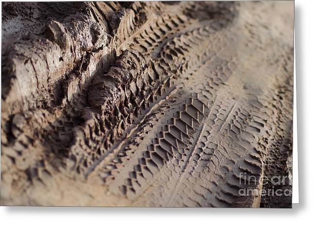 Medium Cu Motorcycle And Car Tracks In Mud Greeting Card by Jason Rosette