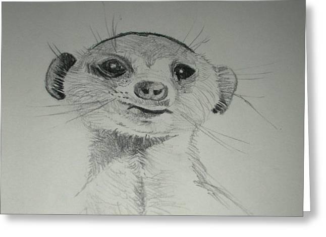 Meerkat Greeting Card by Gordon Shaw