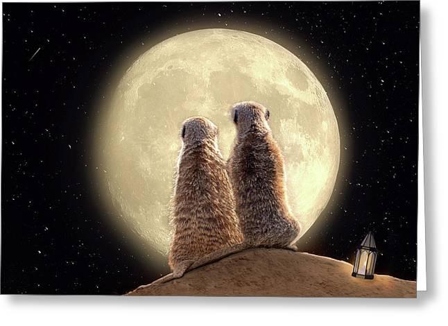 Meerkat Moon Greeting Card