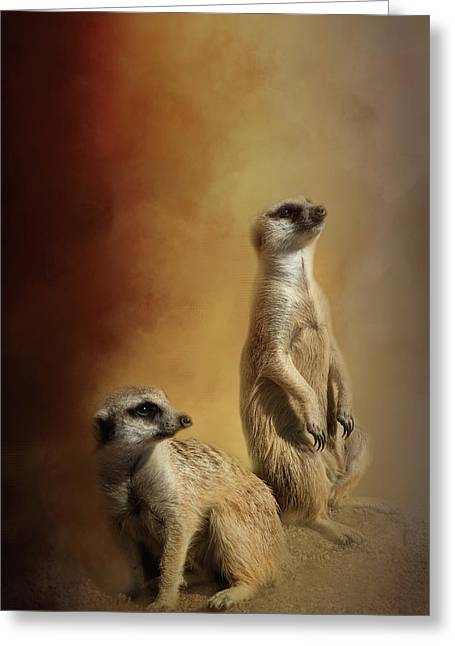 Meerkats Greeting Card