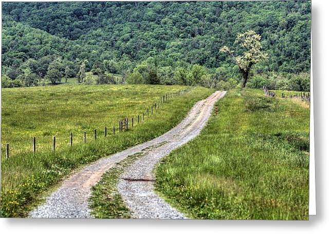 Scenic Drive Photographs Greeting Cards - Meet me at the Tree Greeting Card by JC Findley