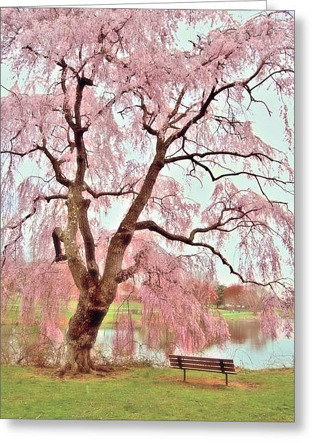 Meet Me Under The Pink Blooms Beside The Pond - Holmdel Park Greeting Card by Angie Tirado