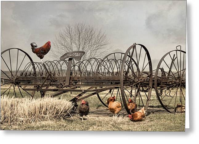Greeting Card featuring the photograph Meeting At Rusty Rake by Robin-Lee Vieira