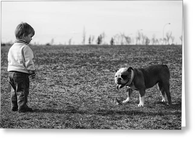 Dog Photographs Greeting Cards - Meeting Greeting Card by Darcy Evans