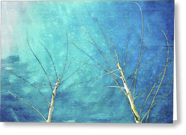 Meeting In Winter Greeting Card