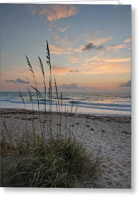 """cheryl Davis"" Greeting Cards - Melbourne Beach Sunrise Greeting Card by Cheryl Davis"