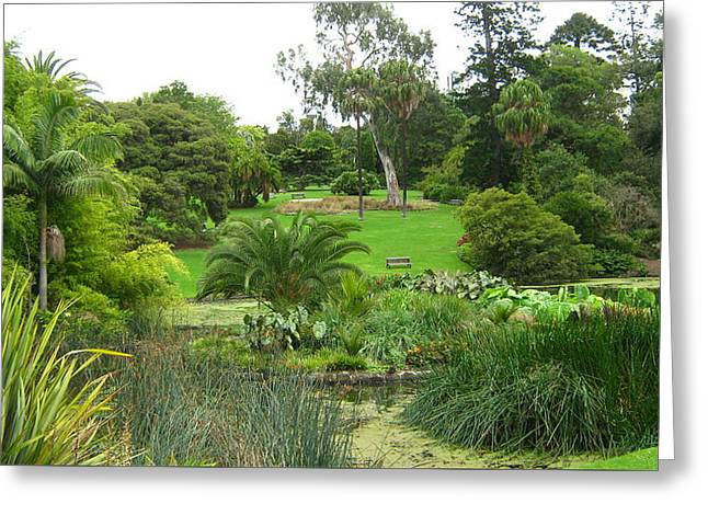 Melbourne Botanical Gardens Greeting Card