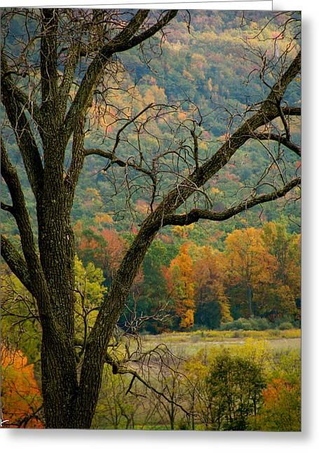 Melody Of Autumn II Greeting Card by Debra     Vatalaro