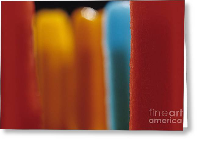 Melting Popsicles Greeting Card by Jim Corwin