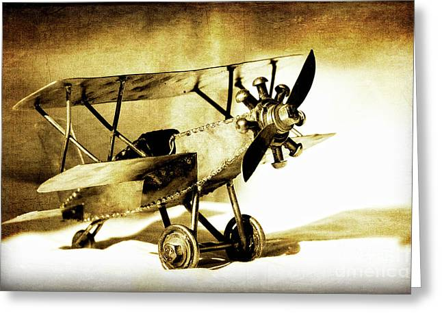 Memories Of Flying Greeting Card by Lincoln Rogers