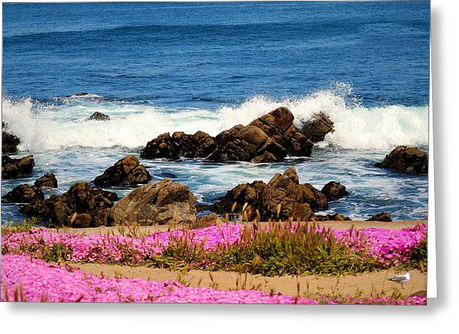 Memories Of Monterey Bay Greeting Card