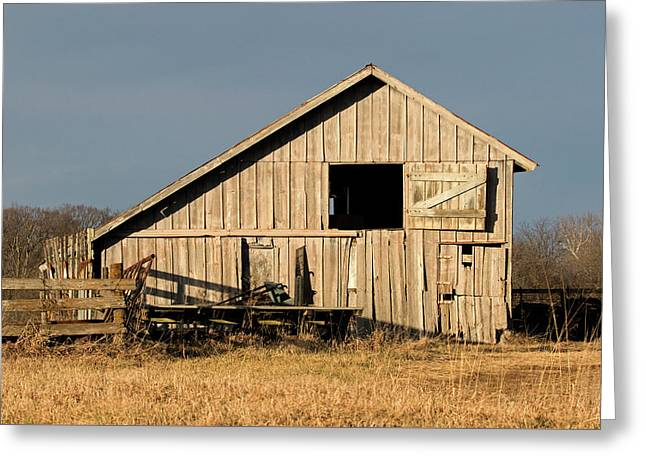 Menard County Shed Greeting Card by Eric Mace