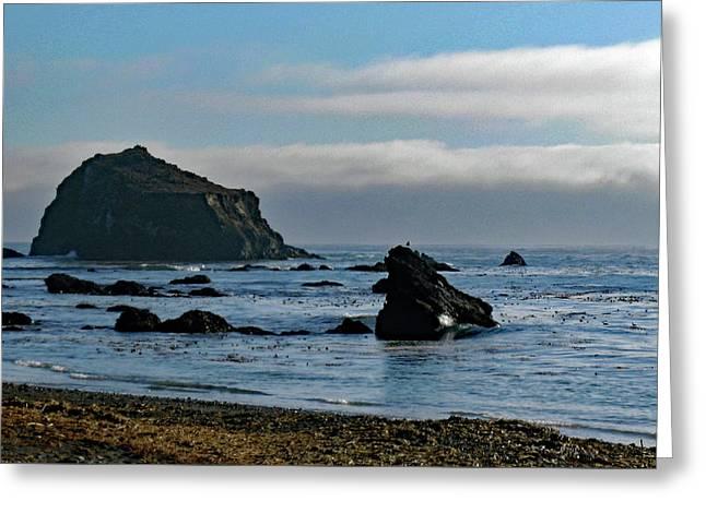 Mendocino Coast No. 1 Greeting Card