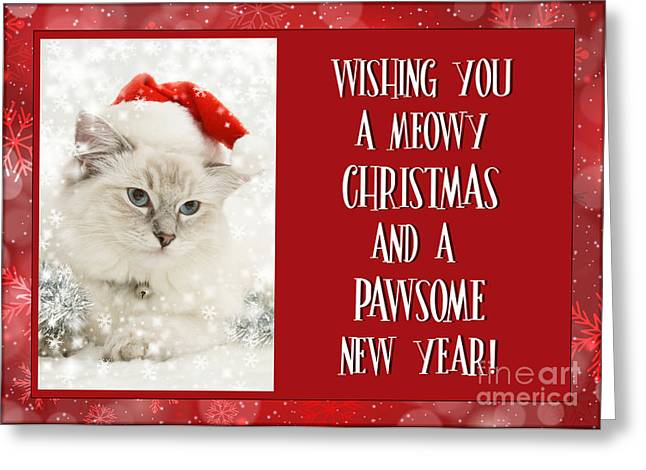 Meowy Christmas Wishes Greeting Card