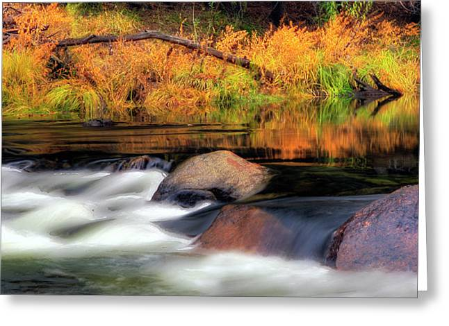 Merced River Autumn Greeting Card by Floyd Hopper