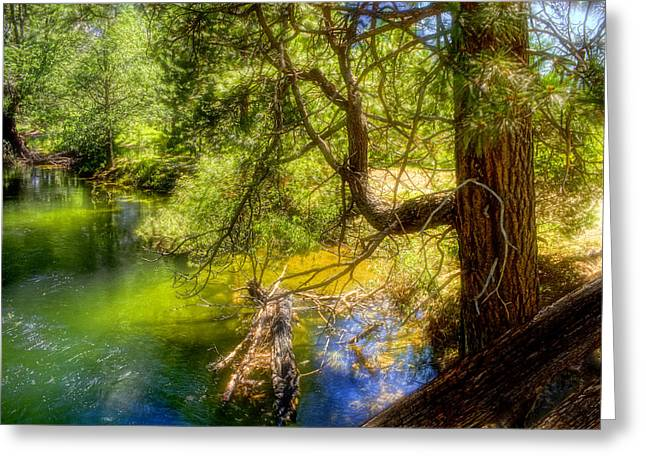 Merced River2 Greeting Card