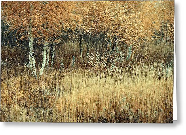 Merging Of Nature Greeting Card by Jenny Rainbow