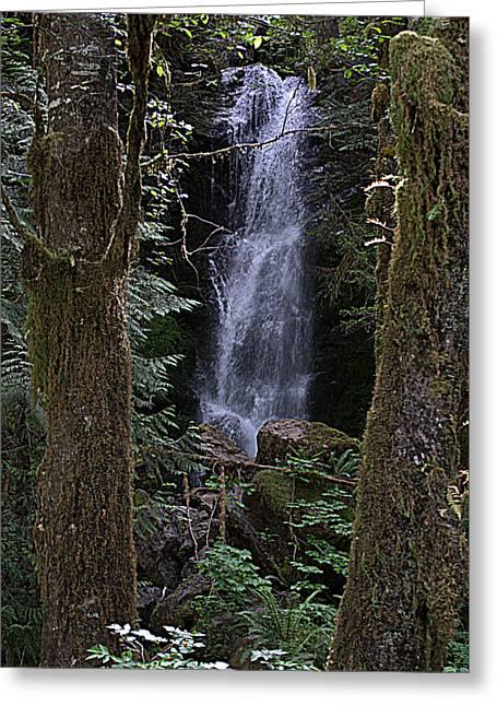 Merriman Falls Greeting Card by Lynn Bawden