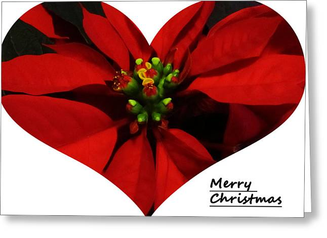 Merry Christmas All Greeting Card