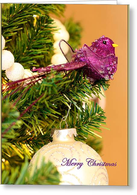 Merry Christmas Greeting Card by Angela Comperry