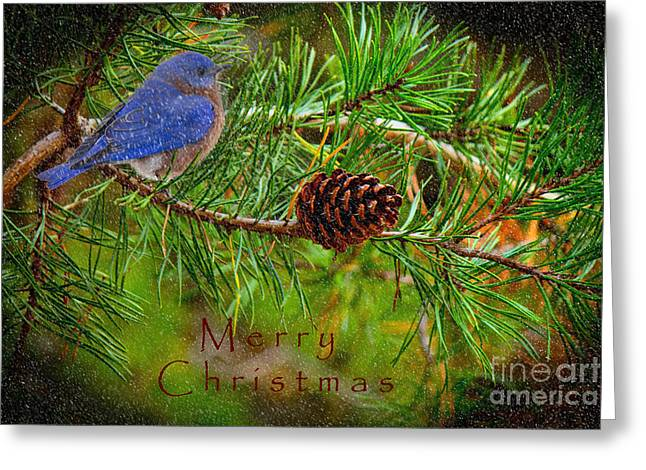Merry Christmas Card With Bluebird Greeting Card