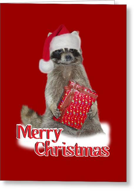 Merry Christmas -  Raccoon Greeting Card