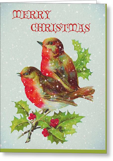 Merry Christmas Snowy Bird Couple Greeting Card by Sandi OReilly