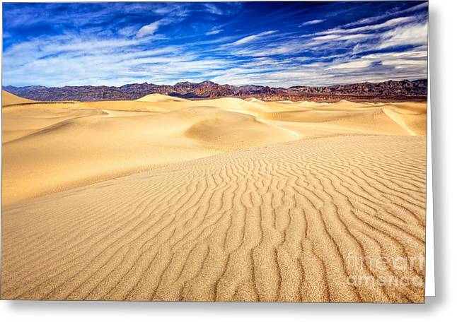 Mesquite Flat Sand Dunes In Death Valley Greeting Card