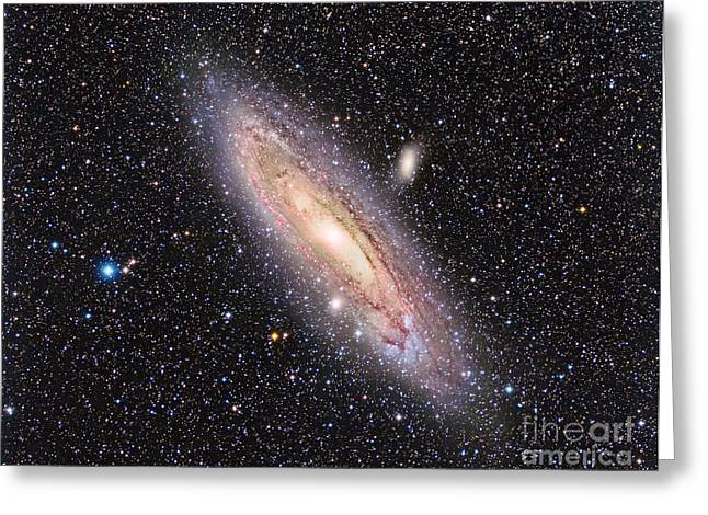 Messier 31, The Andromeda Galaxy Greeting Card by Reinhold Wittich