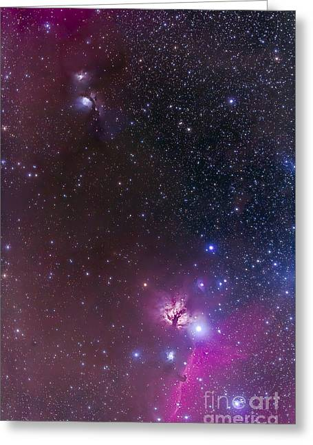 Messier 78 & Horsehead Nebula In Orion Greeting Card