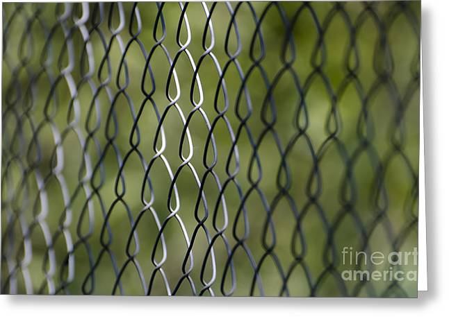 Metal Fence Greeting Card