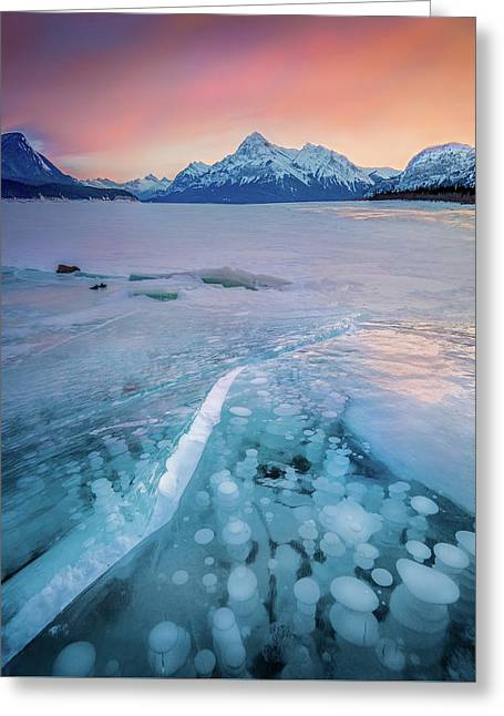 Greeting Card featuring the photograph Methane Bubbles // Abraham Lake, Alberta  by Nicholas Parker