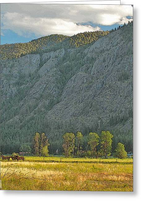 California Art Greeting Cards - Methow Field Sunset Greeting Card by Larry Darnell