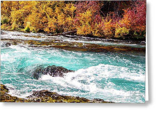 Greeting Card featuring the photograph Metolius River by David Millenheft