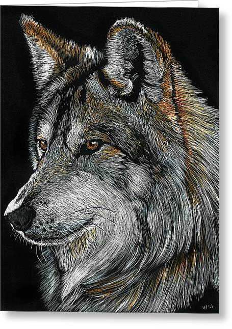 Mexican Wolf Greeting Card