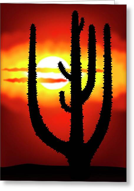Gloaming Greeting Cards - Mexico sunset Greeting Card by Michal Boubin