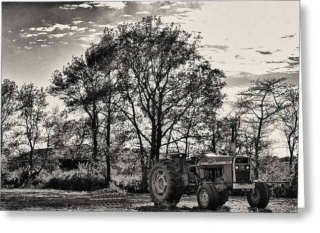 Mf 285 Tractor Greeting Card