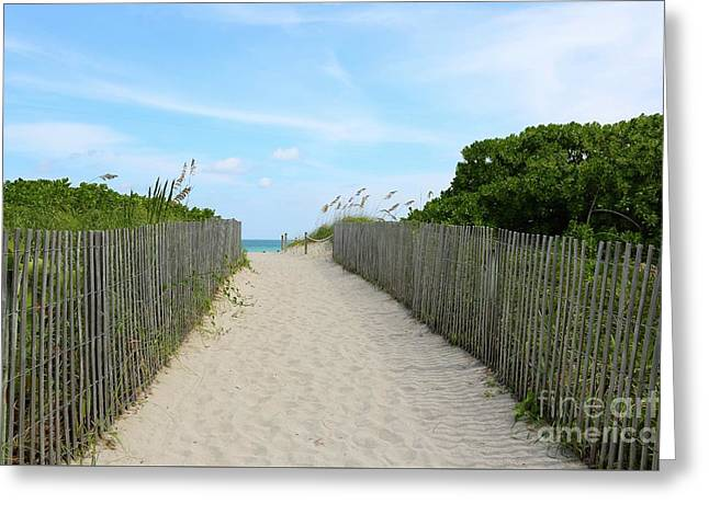Miami Beach Path With Fence Greeting Card by Carol Groenen
