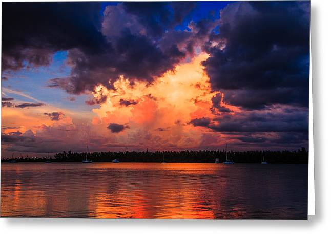 Miami Storm Greeting Card by Jonathan Gewirtz