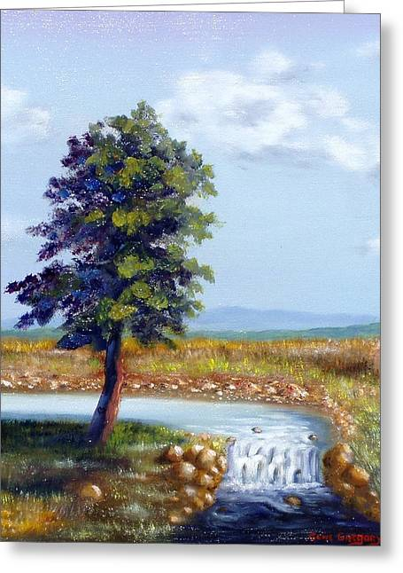 Michaels Waterfall Greeting Card